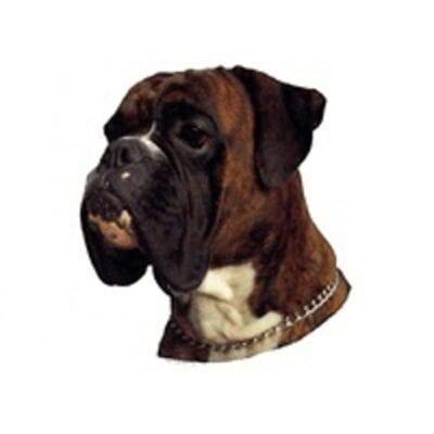 boxer dekal